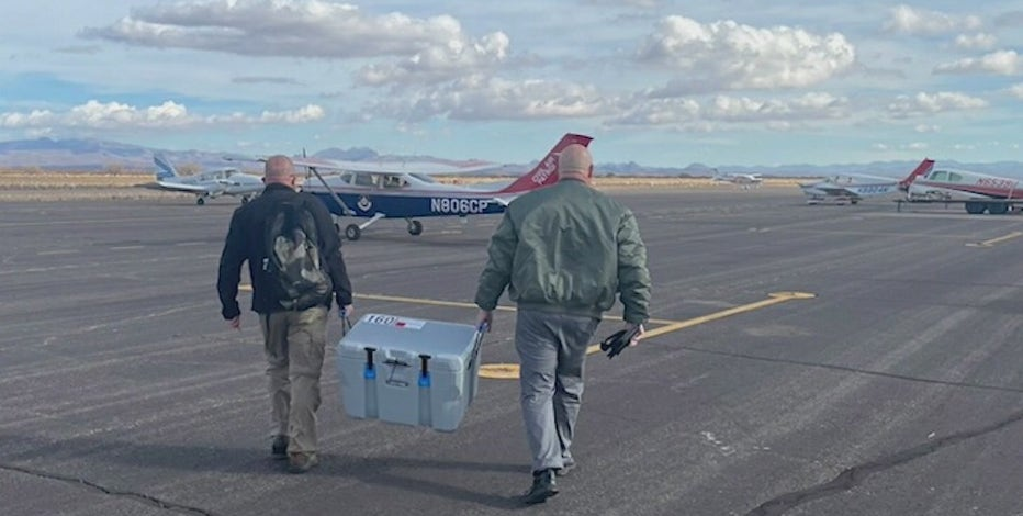 Civil Air Patrol assisting with various relief efforts during COVID-19 pandemic