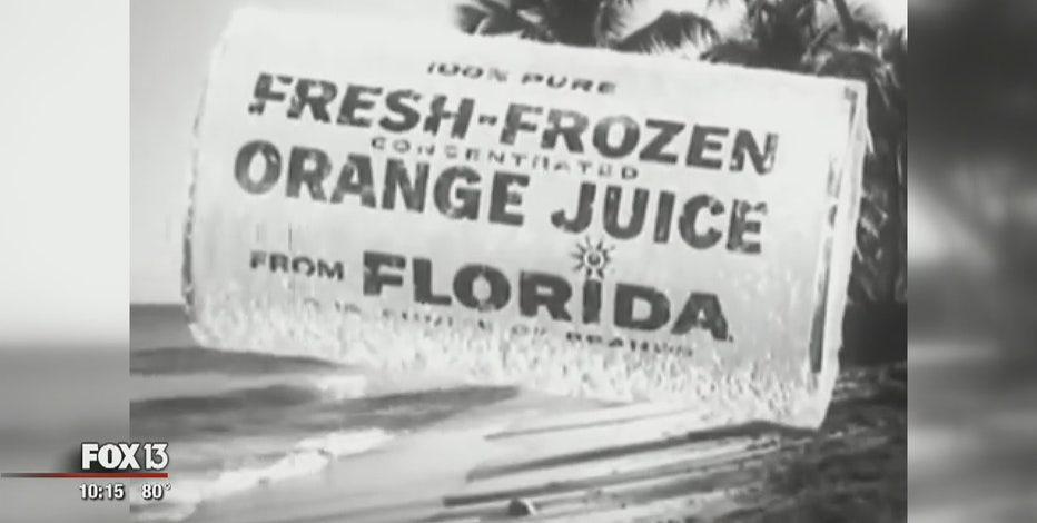 Citrus greening devastates Florida's iconic crop