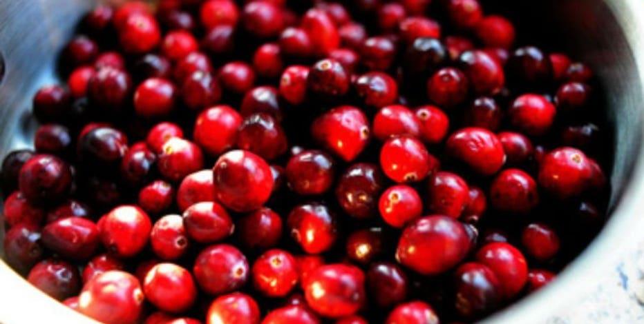 Wisconsin cranberry crop: Dry summer having little impact