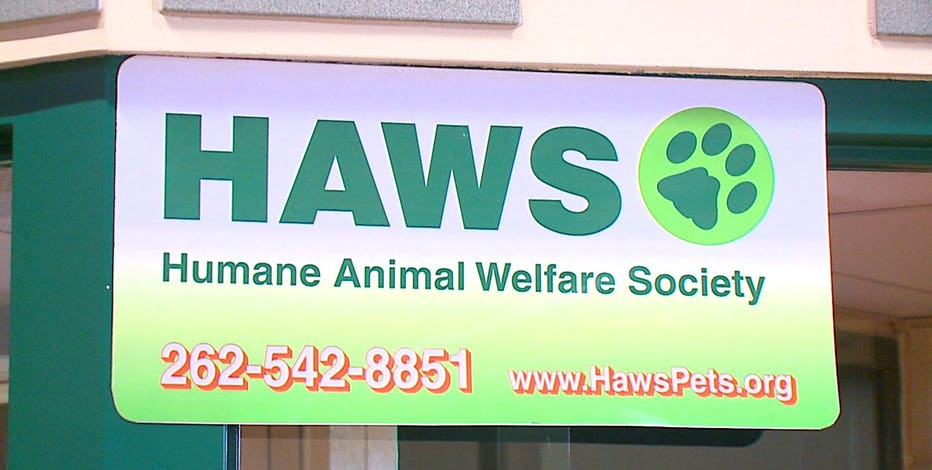 HAWS in Waukesha to receive 15 homeless dogs from Louisiana