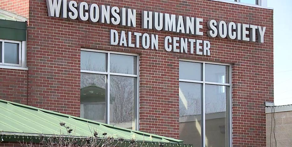 Wisconsin Humane Society donations matched in August, up to $250K