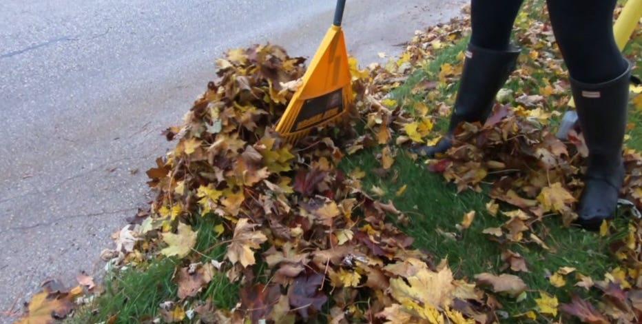 Milwaukee residents rake leaves into street now through Nov. 15