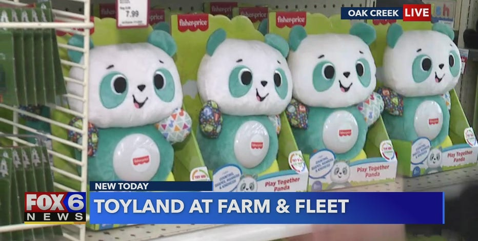Farm and Fleet is transforming into a magical Toyland