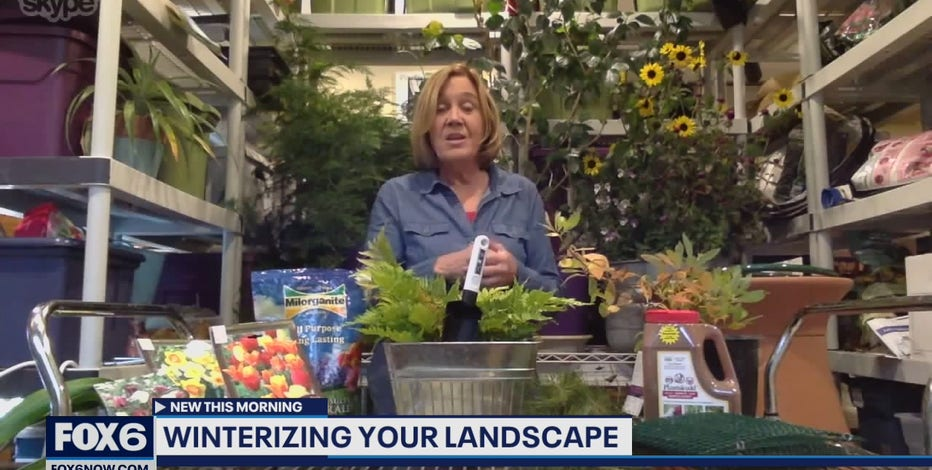 Preparing for winter: Tips on winterizing your landscape