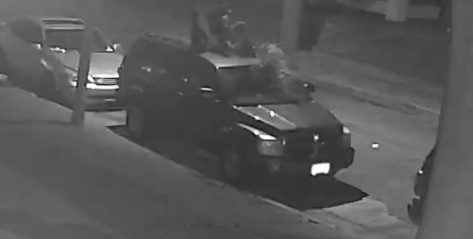 Home surveillance catches dog attack on Milwaukee's north side