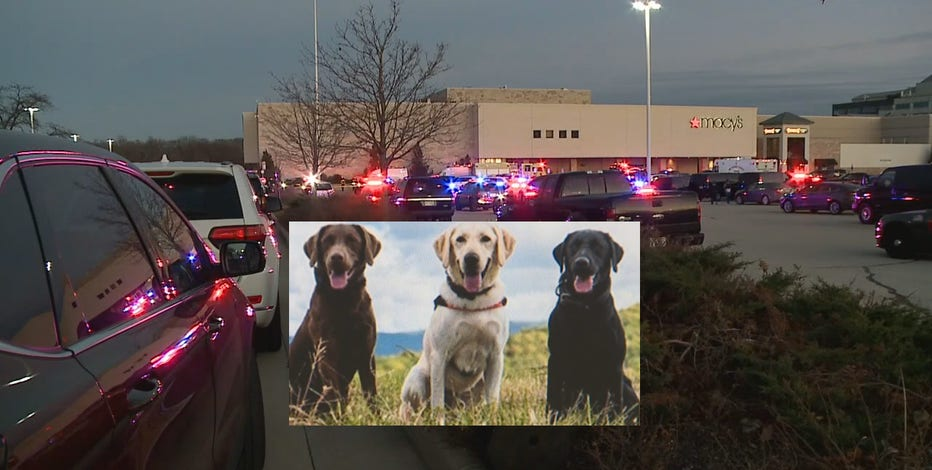 K-9s will detect firearms at Mayfair Mall