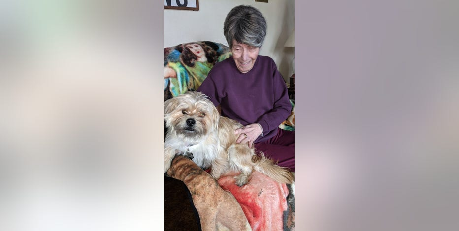 Milwaukee woman finds her lost dog for sale on Facebook