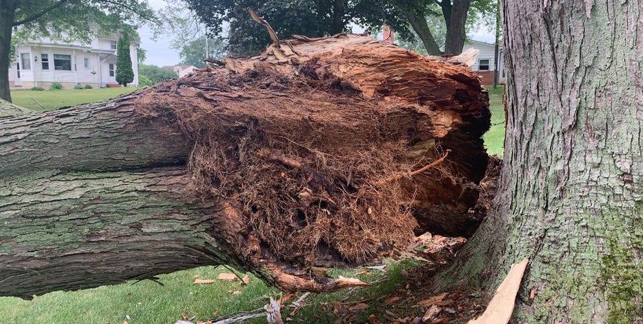 Storm damage? NARI warns homeowners of dishonest contractors