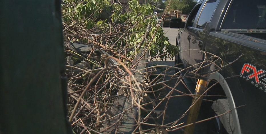 Storm debris drop-off in Milwaukee, Waukesha County