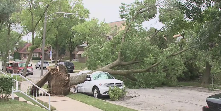 Storms down Milwaukee trees, power lines; damage widespread