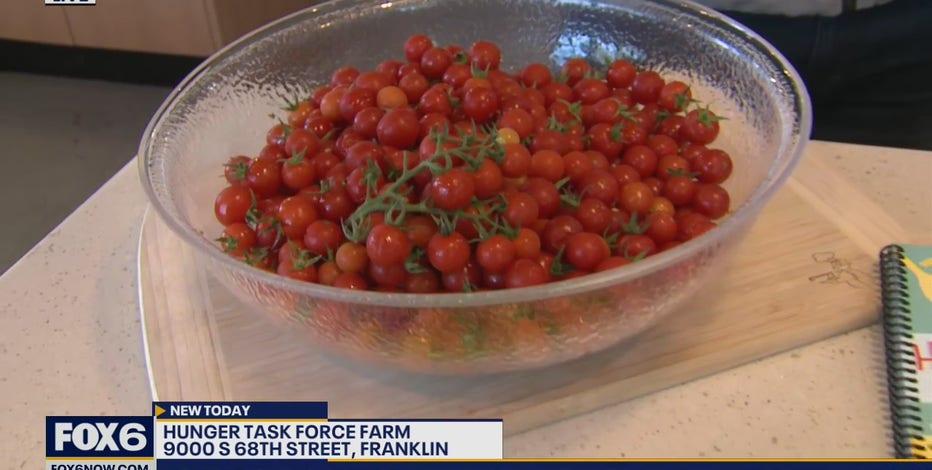 The Hunger Task Force Farm is a unique 208-acre farm