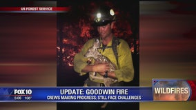 Elite firefighters save baby deer from Arizona wildfire