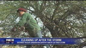 Cleanup begins at Southwest Wildlife Conservation Center after last week's winter storm caused damages