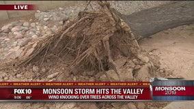 Monsoon leaves behind storm damage in East Valley