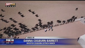 Drone Zone: Rooster Cogburn Ostrich Ranch