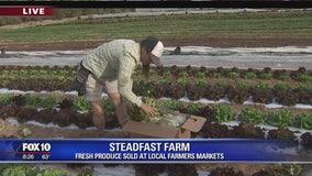 Cory's Corner: Steadfast Farm