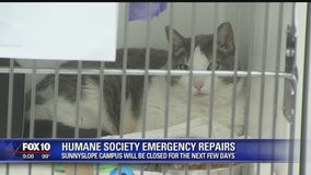 Arizona Humane Society temporarily closing Sunnyslope Campus for emergency repairs