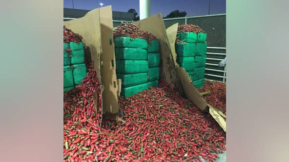 CBP officers seize $2.3 million worth of marijuana inside shipment of jalapeño peppers