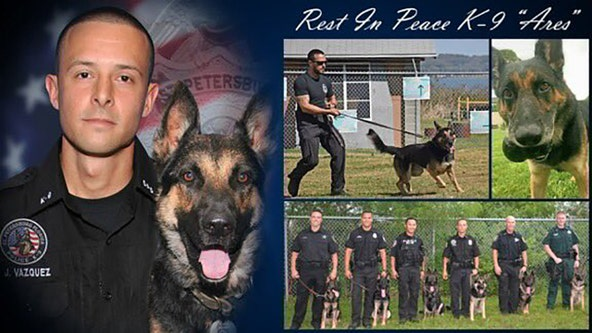 St. Pete police mourn the loss of K9 'Ares'