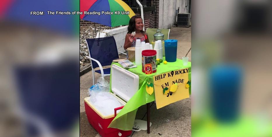 6-year old-girl starts lemonade stand to raise money for retired K9