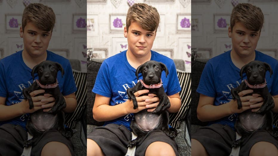 Dog with 6 legs adopted by bullied teen: 'Now he's got a