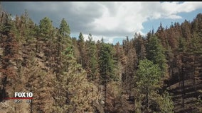 City of Flagstaff pulls out all the stops to prevent post-fire flooding