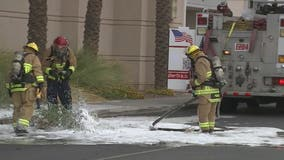 FD: Baby, 4 others hurt following bee attack at Chandler Fashion Center