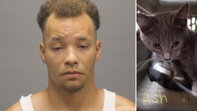 Man accused of putting wet kitten inside a freezer and slamming another kitten's head into the floor