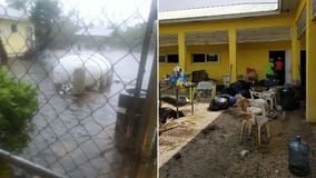 Hurricane Dorian's powerful storm surge kills 220 dogs, 50 cats at animal shelter in Bahamas