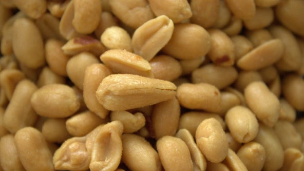 US health experts back treatment for kids with peanut allergy