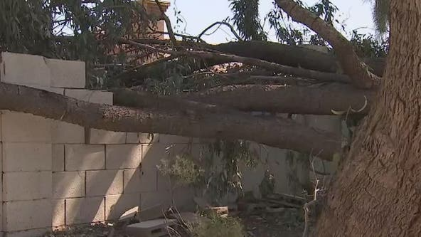 Valley residents left on cleanup duty following weekend storm