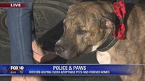 Police and Paws: Phoenix officers helping animals find forever homes