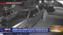 Warrant Wednesday: Surprise Police looking for car break-in suspects