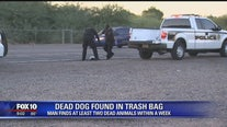 Dead animals dumped in the Glendale area