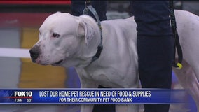 Lost Our Home Pet Rescue needs food, supplies for pet food bank