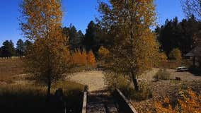 Drone Zone: The Arboretum in Flagstaff is the picture-perfect place to visit for Fall