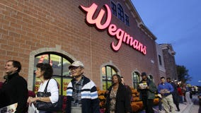 Customers sue Wegmans for selling vanilla ice cream made with no vanilla