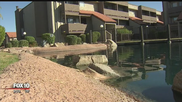 Near drowning call: 2-year-old found in a Mesa condominium complex pond
