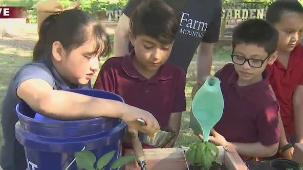 Martin Luther King Jr. elementary students get gardening lesson