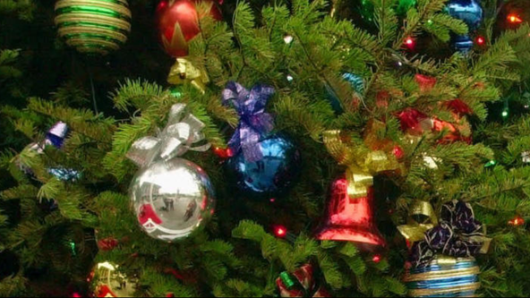 Gov. Ducey to light Capitol Christmas tree