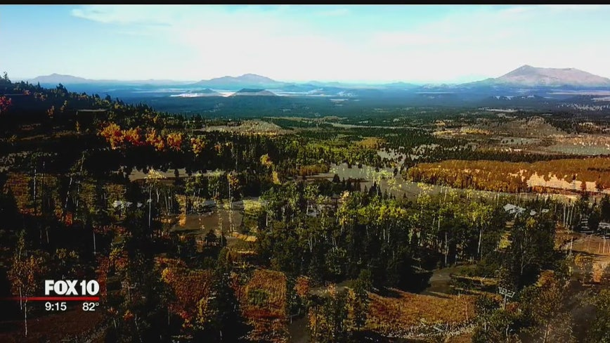 Scenic chairlift at Arizona Snowbowl is one of the best places to see fall leaves