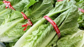 Don't eat romaine lettuce grown in Salinas, California, US health officials say