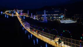 Gorgeous! The SkyBridge in Gatlinburg is lit up for the holiday season