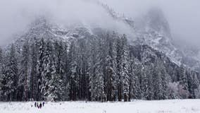 Winter wonderland: Yosemite National Park blanketed in snow