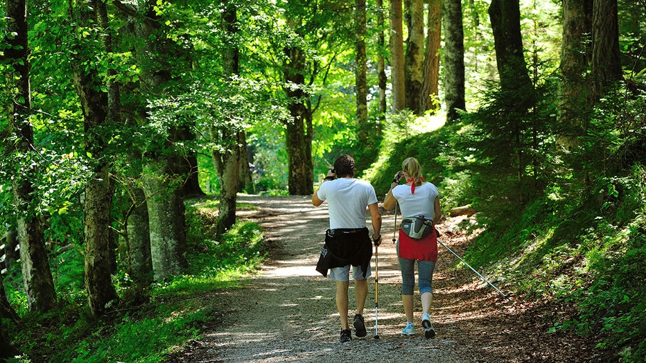 Hikers in a park, Salurn, Trentino-Alto Adige, Italy.