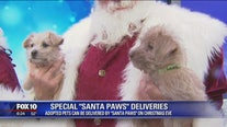 MCACC offering 'Santa Paws' deliveries