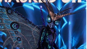 Butterfly unveiled on FOX's 'The Masked Singer' — see the celebrity under the mask