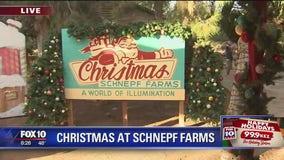 Cory's Corner: Christmas at Schnepf Farms