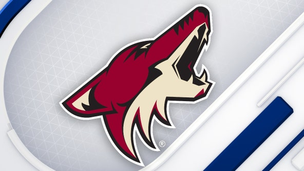 Coyotes tab Armstrong as next general manager