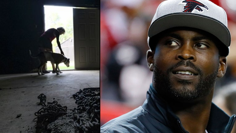 ATLANTA, GA - JANUARY 01: Former Atlanta Falcons player Michael Vick walks on the field prior to the game against the New Orleans Saints at the Georgia Dome on January 1, 2017 in Atlanta, Georgia.